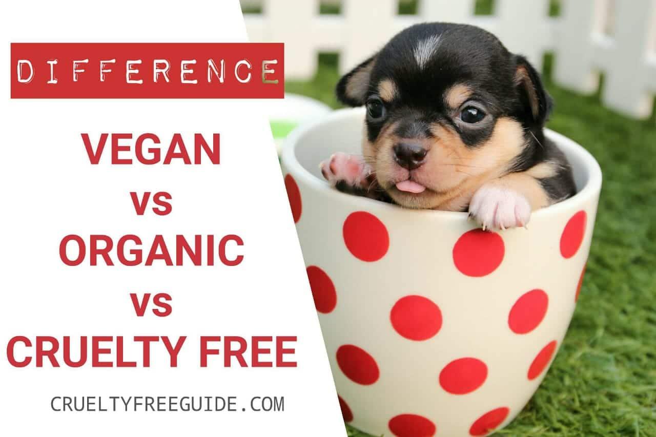 Cruelty free vs organic vs vegan