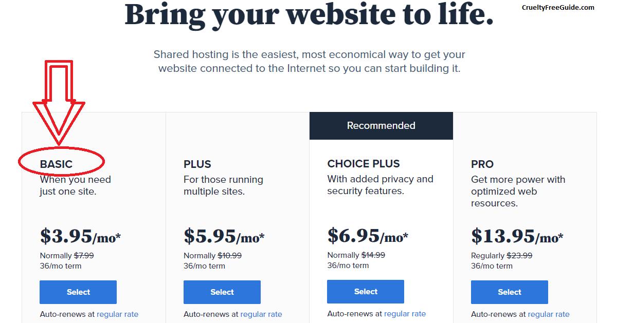 starting a blog and make money