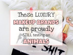 Premium Makeup Brands testing on animals