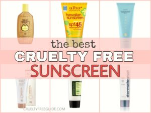 Best Cruelty-Free Sunscreen